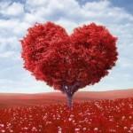 Семинар «С ЛЮБОВЬЮ К СЕБЕ» или «ЛЮБОВЬ К СЕБЕ МЕНЯЕТ КАРМУ!»