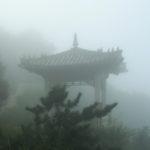 15 ноября 2021г. - Первая ступень Чжун Юань Цигун